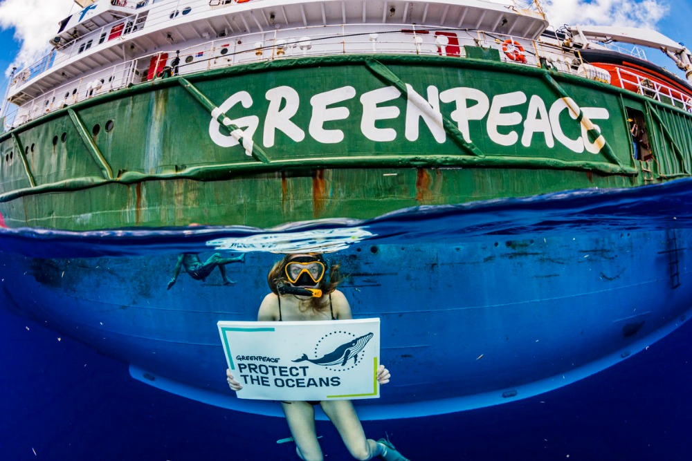 Climate change charities Greenpeace CREDIT Shane Gross-Greenpeace_picmonkeyed